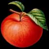 和平精英大蘋果透視自瞄輔助